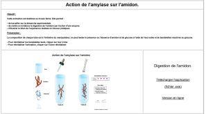action-amylase